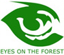 Eyes on the Forest
